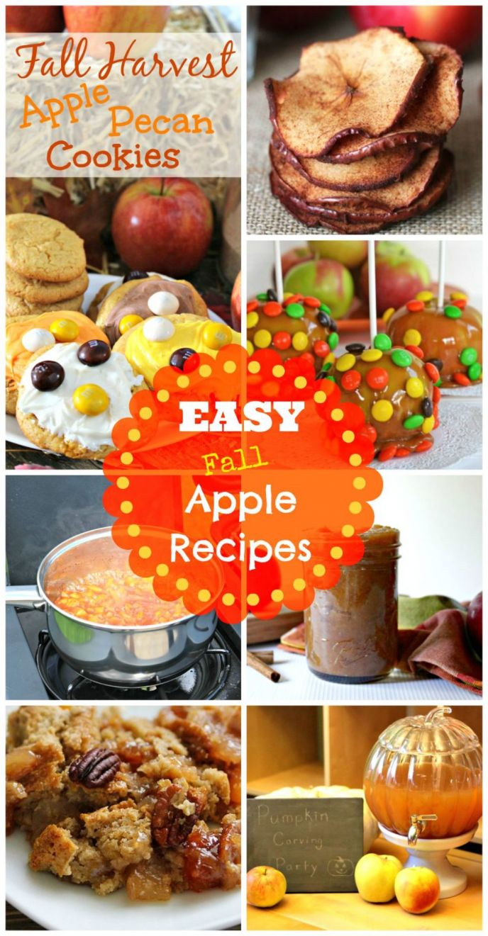 Fall apple recipes that are easy to follow and EASY to make! Get all of these recipes now!