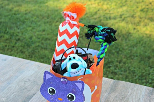 Halloween Gift for Animal Shelter