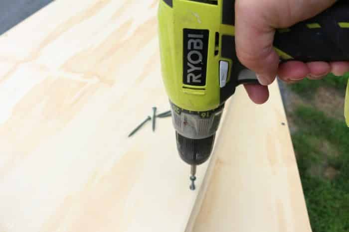 screwing plywood to frame