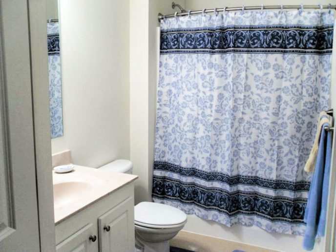 Getting rid of ants in the bathroom, photo of master bathroom with blue shower curtain.